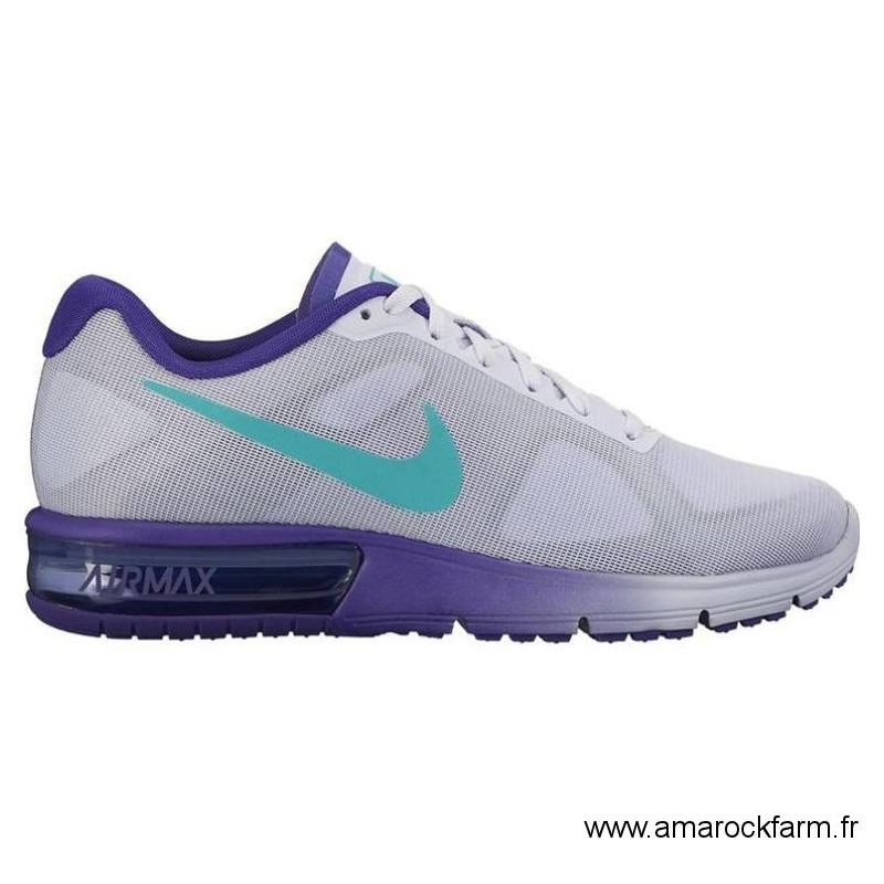 basket nike air max bleu